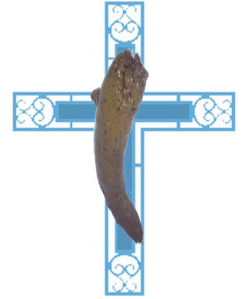 Moravagine sah das Antlitz Gottes