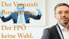 Die FPÖ ist keine Wahl - Sagt der Hausverstand