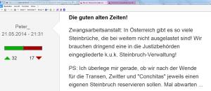 FPÖ Unz Peter_ Steinbrüche nach der Wende für Transen Zwitter Bettler Conchitas