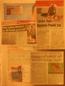 Österreich - Ein toter Pudel bekommt mehr Platz als sechszehntausend Kinder die täglich sterben