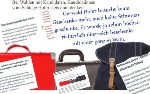 hofer-norbert-gerwald-motto-fur-immer-hinaus-aus-der-hofburg