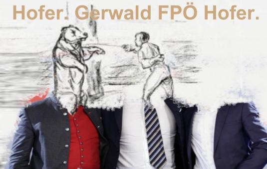 System stellt sich vor - Hofer - Gerwald FPÖ Hofer.jpg
