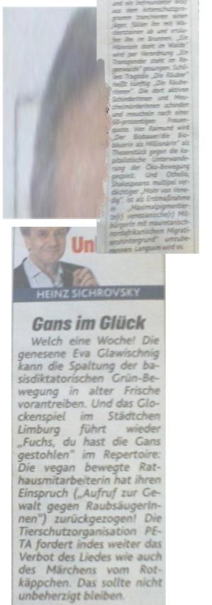 Sichrovsky Heinz - Vergessen