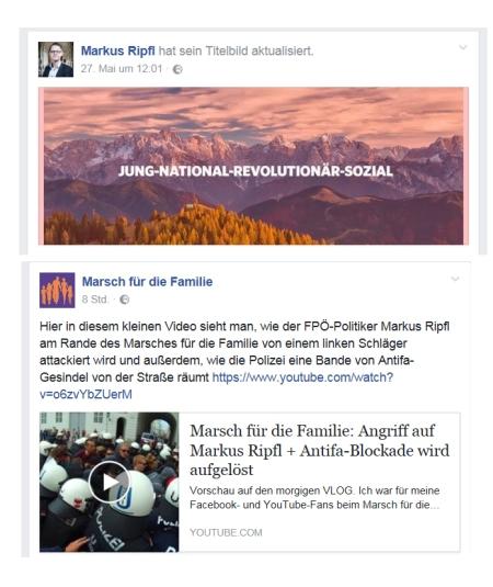Markus Ripfl --national-sozial - Marsch für die Familie 17-06-2017