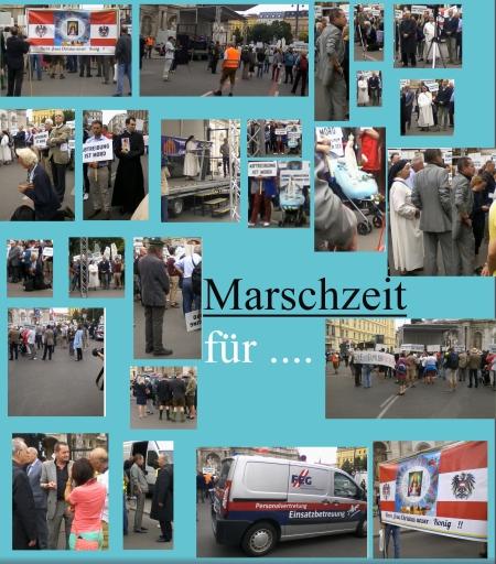 Marsch für die Familie - Albertinaplatz - Parlament - Erzdiösese Wien - 17.06-2017.jpg