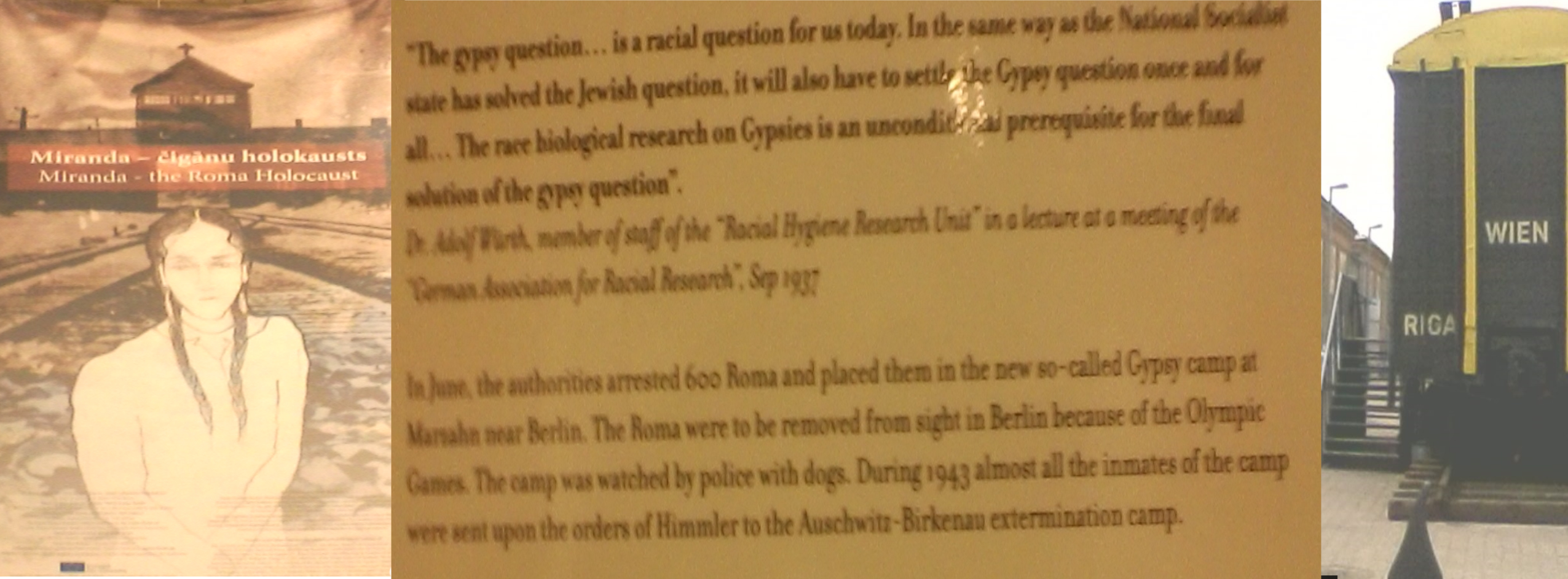 Gypsy question - in the same way as the national socialist state has solved the Jewish question
