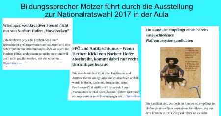 Hofer - Wiesinger