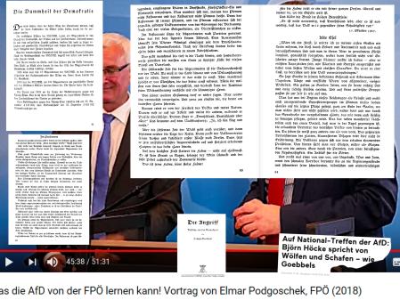 AfD - FPÖ.png