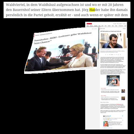 Salvini - Willkommen für Identitäre Regierungspartei Österreich